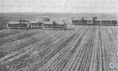 Весенний сев в селе Межирич Павлоградского района. 1976 г.