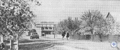 Центральная улица села Владимировки. 1977 г.