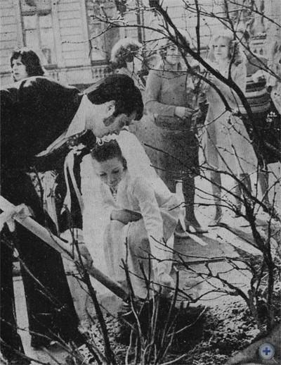Молодожены садят розы. Турка, 1976 г.