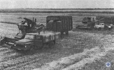 Уборка хлеба в совхозе «Пiдгородний». 1976 г.