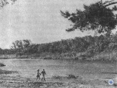 На речке Орели у села Лычкова. 1977 г.