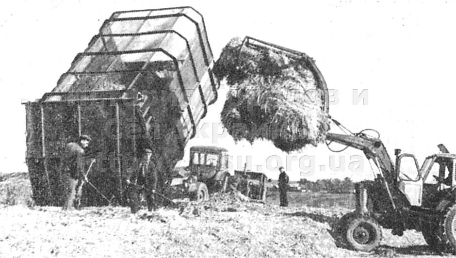 Заготовка кормов в колхозе «Дружба» села Карабаново. 1976 г.