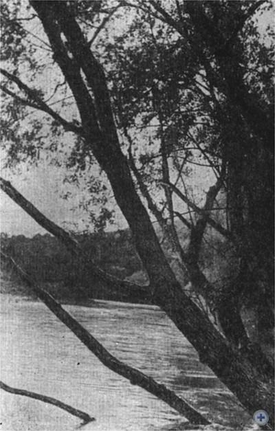 Осенний паводок. 1980 г.