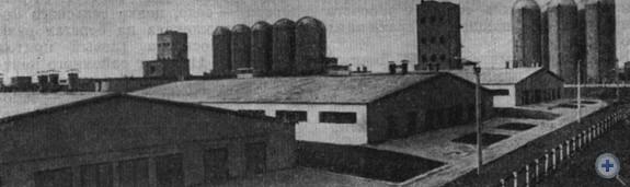 Животноводческий комплекс по откорму крупного рогатого скота в совхозе «Чапаевский». Михайловка, 1979 г.